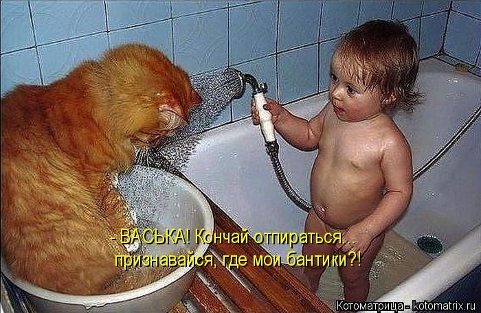http://kotomatrix.ru/images/lolz/2014/11/20/kotomatritsa_r.jpg