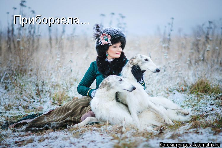 http://kotomatrix.ru/images/lolz/2014/11/21/kotomatritsa_QM.jpg