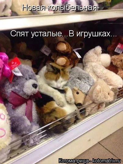 Котоматрица: Новая колыбельная- Спят усталые...В игрушках...