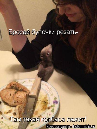 Котоматрица: Бросай булочки резать- Там такая колбаса лежит!