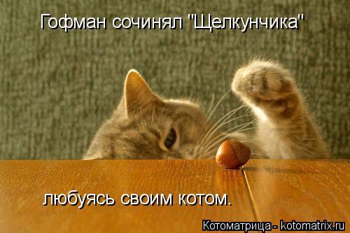 "Котоматрица: Гофман сочинял ""Щелкунчика"" любуясь своим котом."