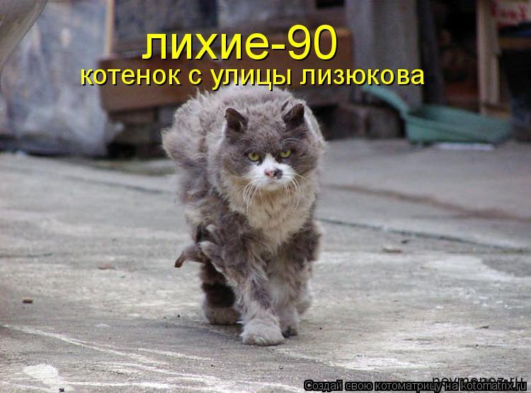 Котоматрица: лихие-90 котенок с улицы лизюкова