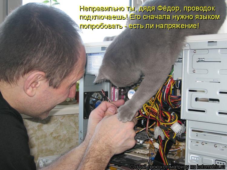 Котоматрица: Неправильно ты, дядя Фёдор, проводок подключаешь! Его сначала нужно языком попробовать - есть ли напряжение!