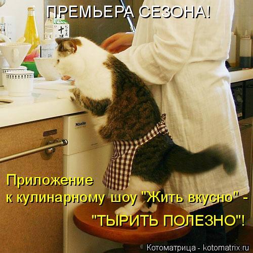 """Котоматрица: Приложение к кулинарному шоу """"Жить вкусно"""" - """"ТЫРИТЬ ПОЛЕЗНО""""! ПРЕМЬЕРА СЕЗОНА!"""
