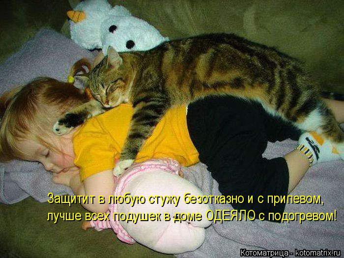 Котоматрица: Защитит в любую стужу безотказно и с припевом, лучше всех подушек в доме ОДЕЯЛО с подогревом!