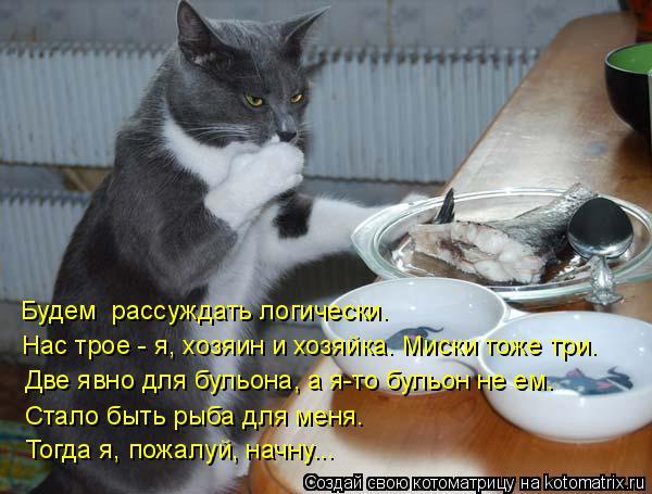 Котоматрица: Будем  рассуждать логически. Нас трое - я, хозяин и хозяйка. Миски тоже три. Две явно для бульона, а я-то бульон не ем. Стало быть рыба для меня.