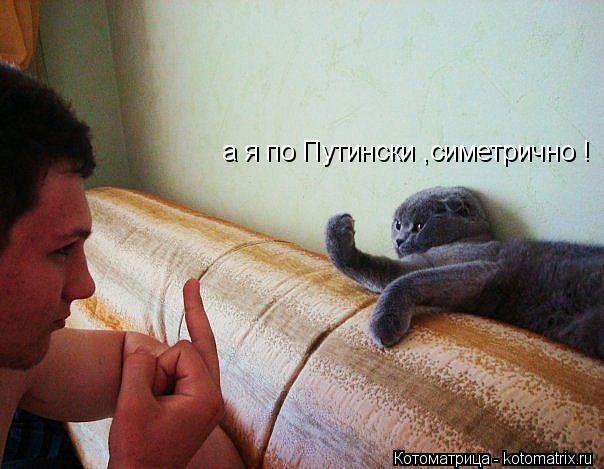 Котоматрица: а я по Путински ,симетрично !