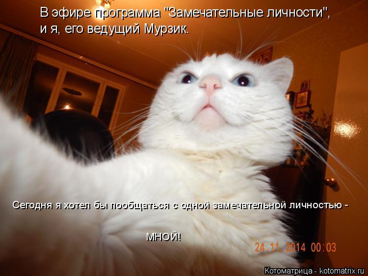 """Котоматрица: В эфире программа """"Замечательные личности"""",  и я, его ведущий Мурзик.  Сегодня я хотел бы пообщаться с одной замечательной личностью -  МНОЙ!"""
