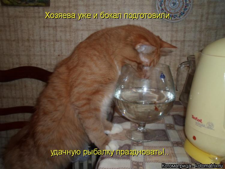 Котоматрица: Хозяева уже и бокал подготовили,  удачную рыбалку праздновать!..