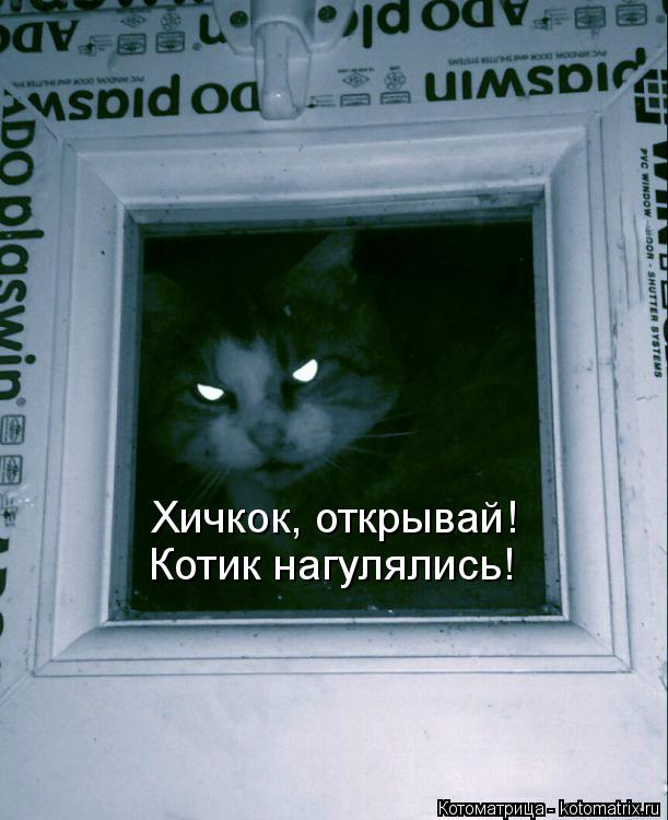 Котоматрица: Хичкок, открывай! Котик нагулялись!