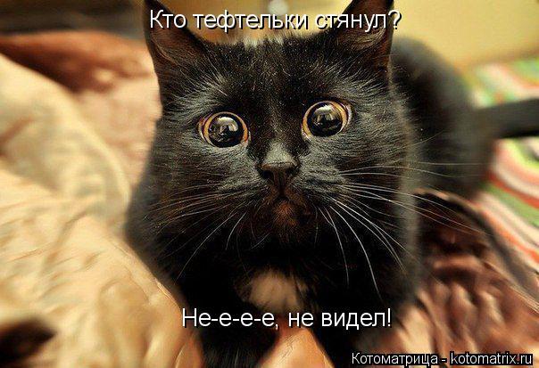 Котоматрица: Кто тефтельки стянул?  Не-е-е-е, не видел!