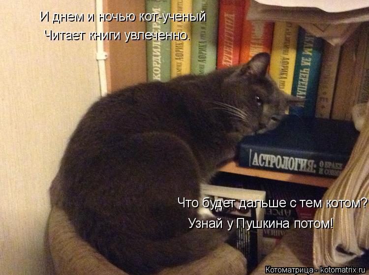 Котоматрица: И днем и ночью кот-ученый Читает книги увлеченно. Что будет дальше с тем котом? Узнай у Пушкина потом!