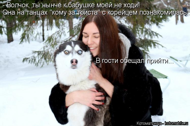 http://kotomatrix.ru/images/lolz/2014/12/04/kotomatritsa_pA.jpg