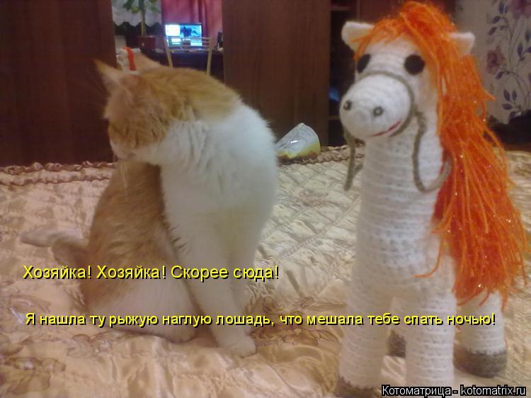 http://kotomatrix.ru/images/lolz/2014/12/06/kotomatritsa_Sg.jpg