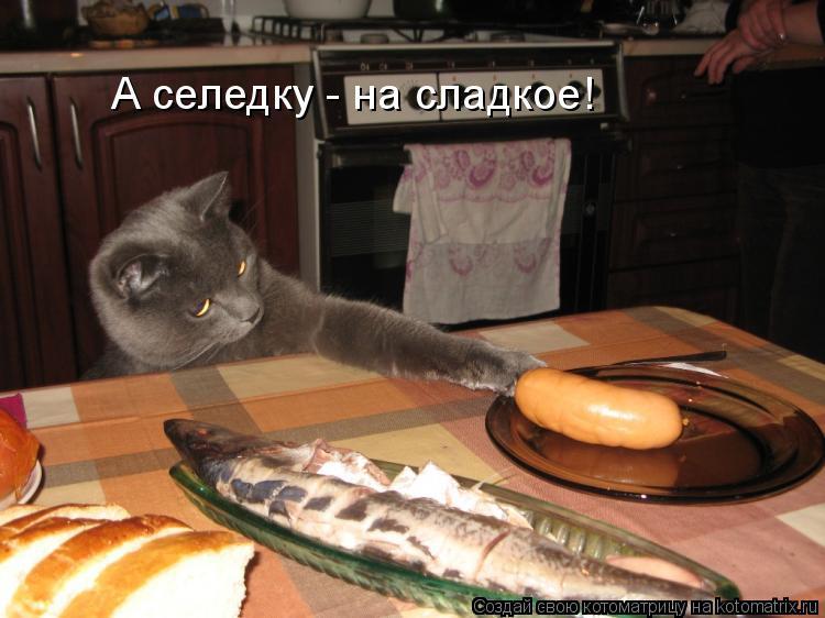 Котоматрица: А селедку - на сладкое!