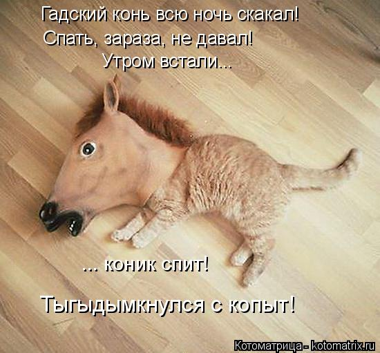 http://kotomatrix.ru/images/lolz/2014/12/07/kotomatritsa_dH.jpg