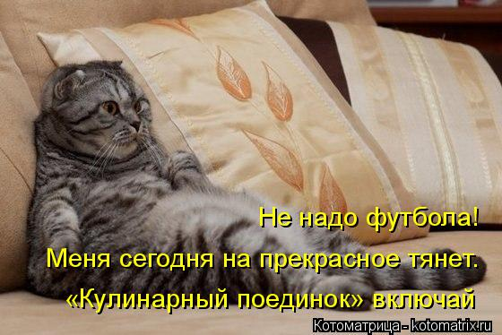 http://kotomatrix.ru/images/lolz/2014/12/10/kotomatritsa_CR.jpg
