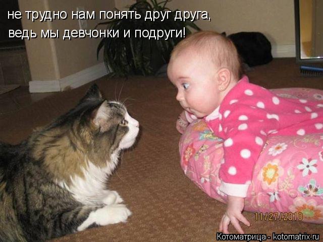 Котоматрица: ведь мы девчонки и подруги! не трудно нам понять друг друга,