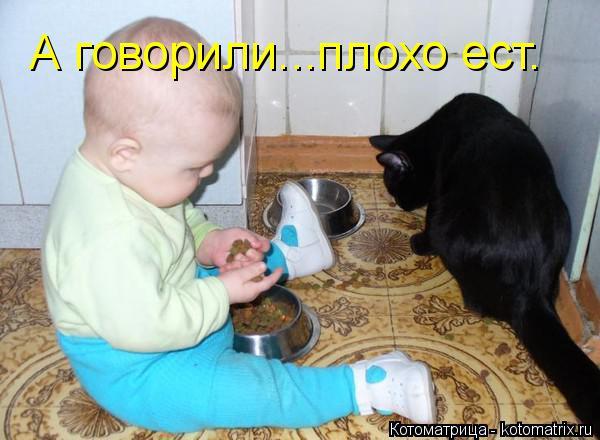 Котоматрица: А говорили...плохо ест.