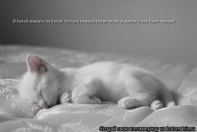 Котоматрица: В белой комнате на белой постели лежала белая киска ,а мысли у неё были черные!