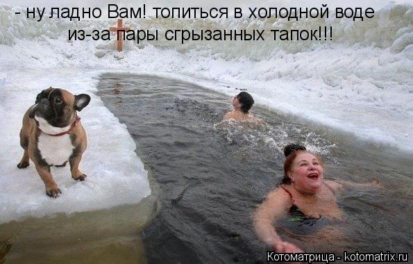 Котоматрица: - ну ладно Вам! топиться в холодной воде из-за пары сгрызанных тапок!!!