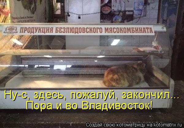 Котоматрица: Ну-с, здесь, пожалуй, закончил... Пора и во Владивосток!
