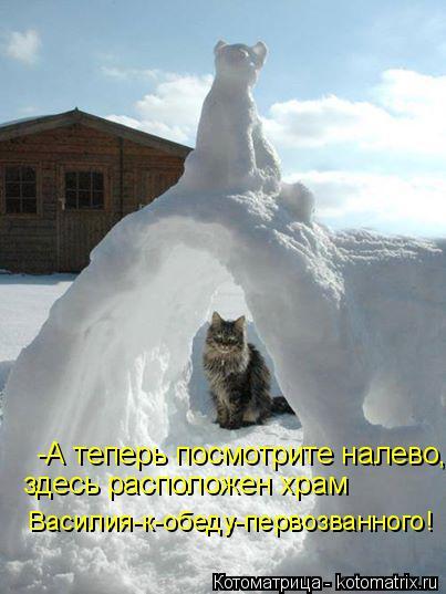 Котоматрица: -А теперь посмотрите налево, здесь расположен храм Василия-к-обеду-первозванного!