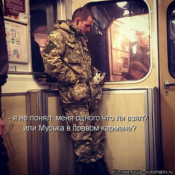 Котоматрица: - я не понял: меня одного что ли взял? или Муська в правом кармане?