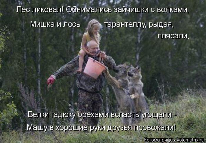 Котоматрица: Лес ликовал! Обнимались зайчишки с волками, Машу в хорошие руки друзья провожали! Мишка и лось           тарантеллу, рыдая, плясали, Белки гадюку