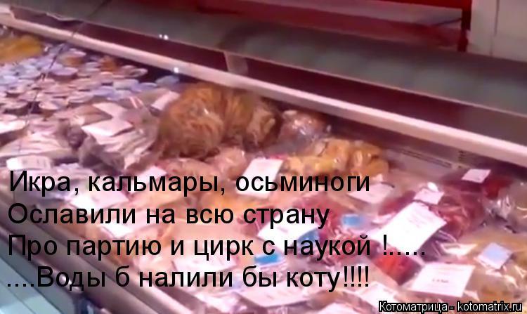 Котоматрица: Икра, кальмары, осьминоги Ославили на всю страну Про партию и цирк с наукой !..... ....Воды б налили бы коту!!!!