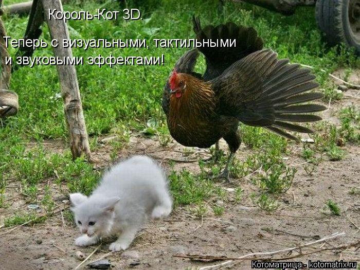 Котоматрица: Король-Кот 3D.  Теперь с визуальными, тактильными  и звуковыми эффектами!