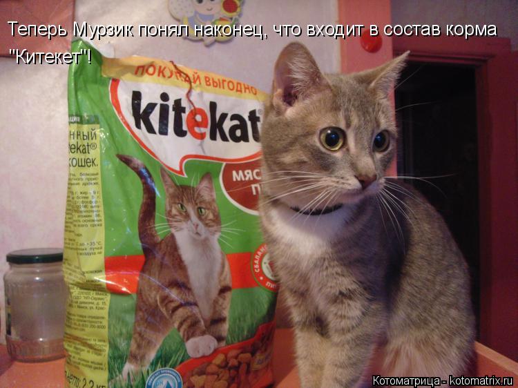 """Котоматрица: Теперь Мурзик понял наконец, что входит в состав корма  """"Китекет""""!"""