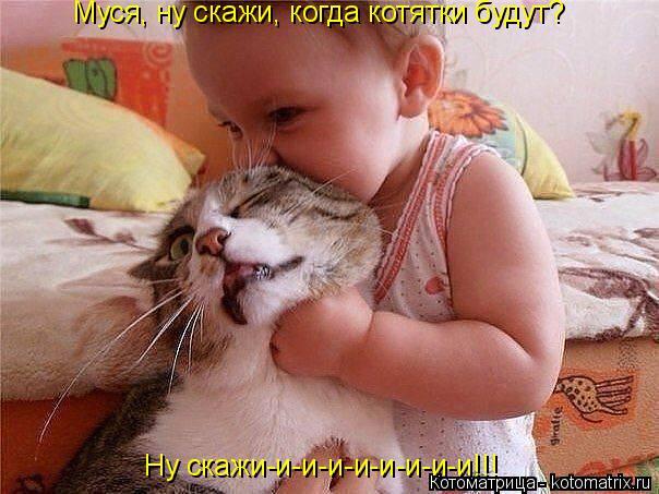 Котоматрица: Муся, ну скажи, когда котятки будут?  Ну скажи-и-и-и-и-и-и-и-и!!!