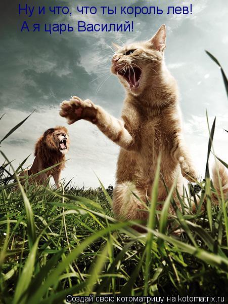 Котоматрица: Ну и что, что ты король лев! А я царь Василий!