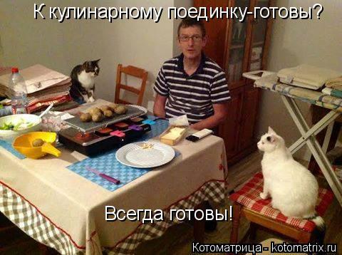 Котоматрица: К кулинарному поединку-готовы? Всегда готовы!