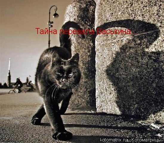 Котоматрица: Тайна перевала Васькина...