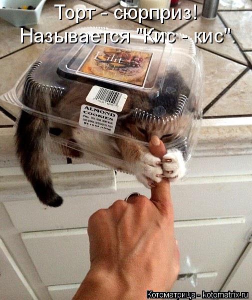 """Котоматрица: Торт - сюрприз! Называется """"Кис - кис""""."""