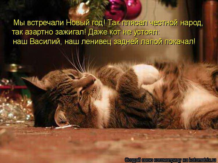 Котоматрица: наш Василий, наш ленивец задней лапой покачал!  так азартно зажигал! Даже кот не устоял:  Мы встречали Новый год! Так плясал честной народ,