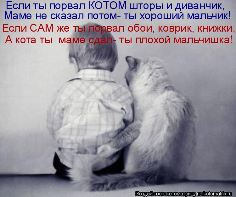 Котоматрица: Если ты порвал КОТОМ шторы и диванчик, Маме не сказал потом- ты хороший мальчик! Если САМ же ты порвал обои, коврик, книжки, А кота ты  маме сда