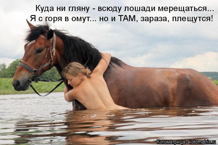 Котоматрица: Куда ни гляну - всюду лошади мерещаться... Я с горя в омут... но и ТАМ, зараза, плещутся!