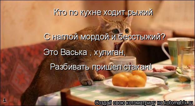 Котоматрица: Кто по кухне ходит рыжий С наглой мордой и бесстыжий? Это Васька , хулиган, Разбивать пришел стакан!