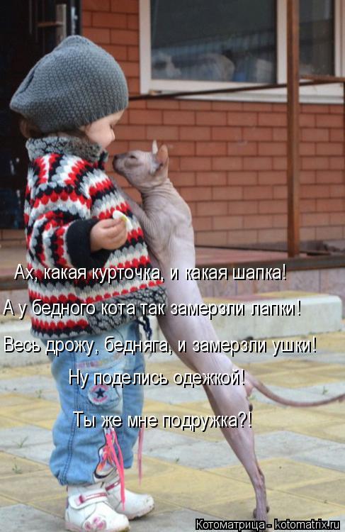 Котоматрица: Ах, какая курточка, и какая шапка! А у бедного кота так замерзли лапки! Весь дрожу, бедняга, и замерзли ушки! Ну поделись одежкой!   Ты же мне по