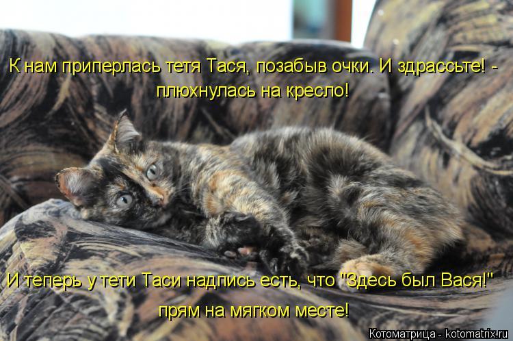 """Котоматрица: И теперь у тети Таси надпись есть, что """"Здесь был Вася!"""" К нам приперлась тетя Тася, позабыв очки. И здрассьте! -   плюхнулась на кресло!  прям на"""