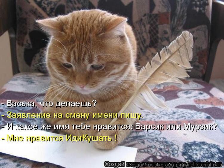 Котоматрица: - Васька, что делаешь? - Заявление на смену имени пишу. - И какое же имя тебе нравится: Барсик или Мурзик? - Мне нравится ИдиКушать !