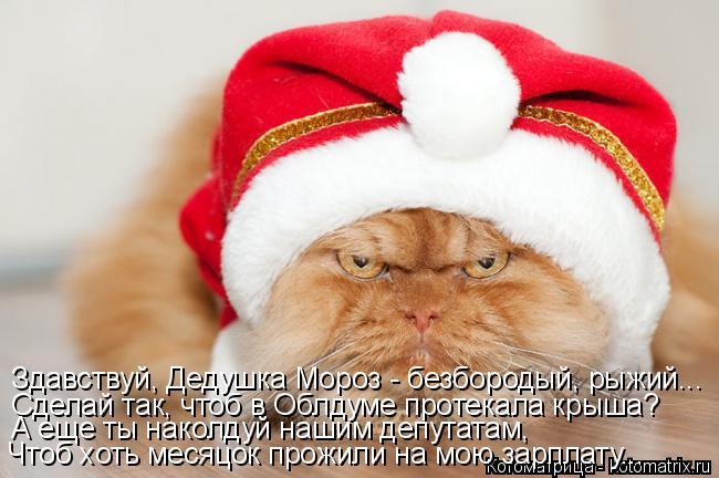 Котоматрица: Здавствуй, Дедушка Мороз - безбородый, рыжий... Сделай так, чтоб в Облдуме протекала крыша? А еще ты наколдуй нашим депутатам, Чтоб хоть месяц