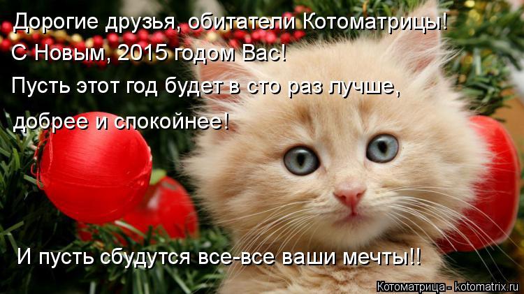 Котоматрица: Дорогие друзья, обитатели Котоматрицы! С Новым, 2015 годом Вас! Пусть этот год будет в сто раз лучше,  добрее и спокойнее! И пусть сбудутся все-в