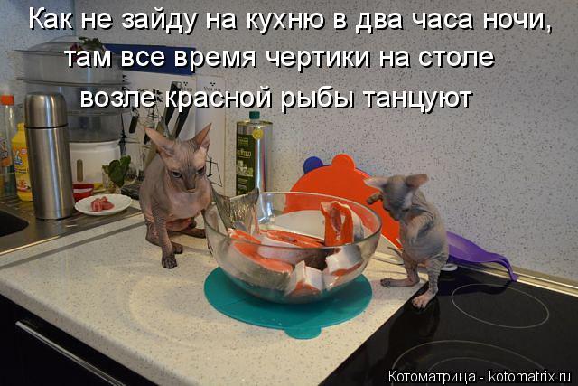 Котоматрица: Как не зайду на кухню в два часа ночи, там все время чертики на столе  возле красной рыбы танцуют