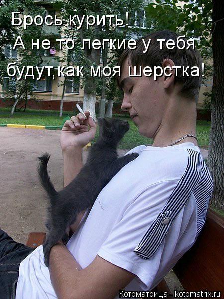Котоматрица: Брось курить! А не то легкие у тебя будут,как моя шерстка!