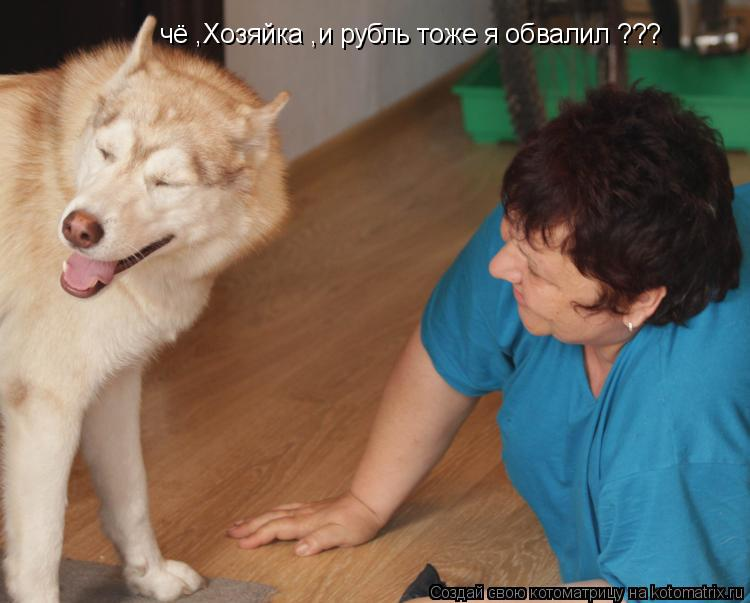 Котоматрица: чё ,Хозяйка ,и рубль тоже я обвалил ???