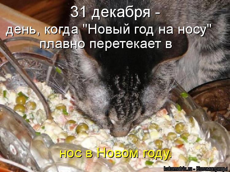 http://kotomatrix.ru/images/lolz/2015/01/08/kotomatritsa_ZY.jpg